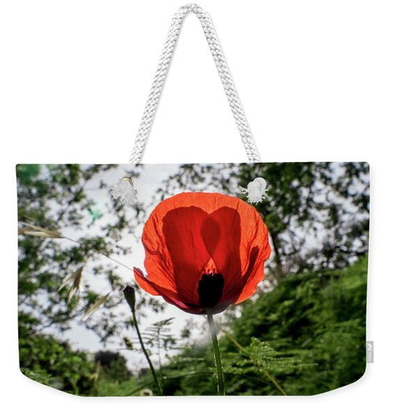 Weekender Tote Bag featuring the photograph The Big Red 02 by Arik Baltinester