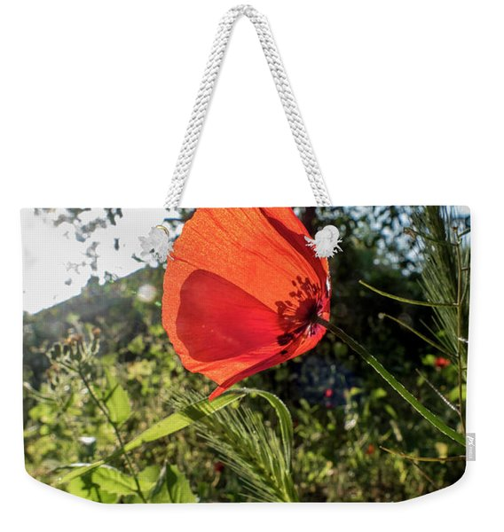 Weekender Tote Bag featuring the photograph The Big Red by Arik Baltinester
