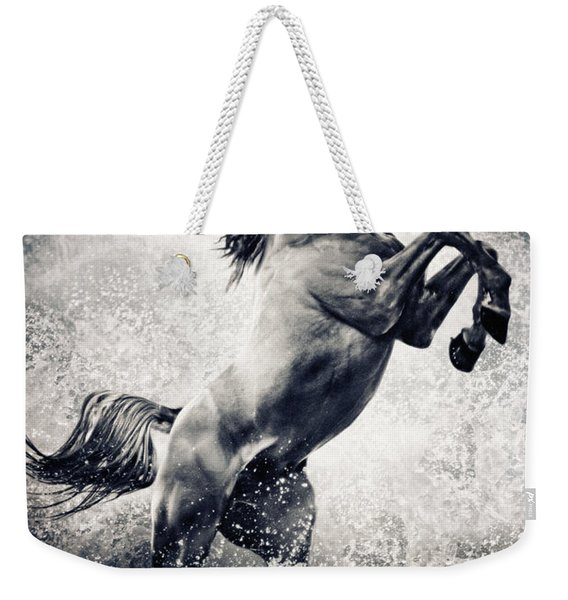 The Black Stallion Arabian Horse Reared Up Weekender Tote Bag