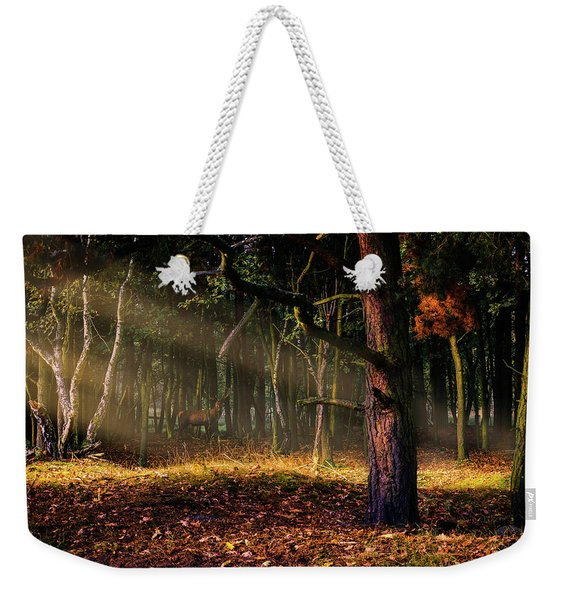 Weekender Tote Bag featuring the photograph The Border by Dmytro Korol