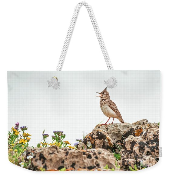 Weekender Tote Bag featuring the photograph The Call by Arik Baltinester
