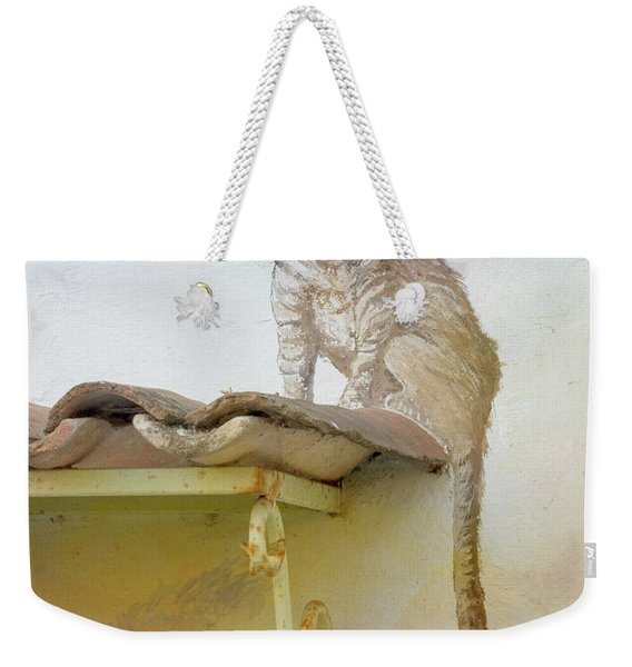 The Cat On The Roof Mural Weekender Tote Bag
