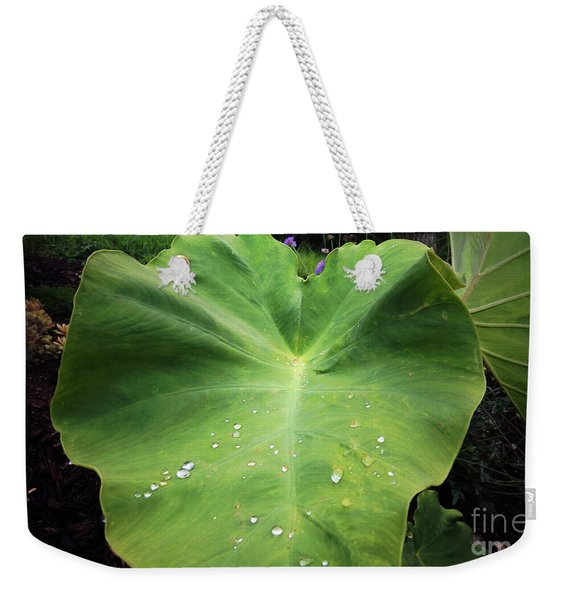 The Catcher Weekender Tote Bag