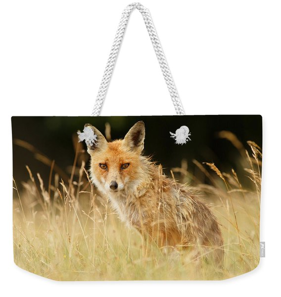 The Catcher In The Grass - Wild Red Fox Weekender Tote Bag