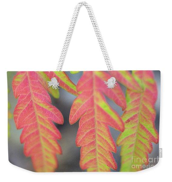 The Colors Of Shumac 8 Weekender Tote Bag