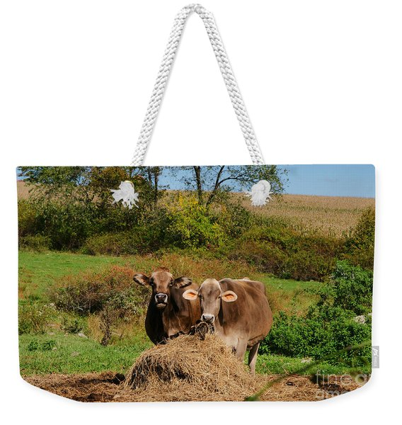 The Company Of 2 Weekender Tote Bag