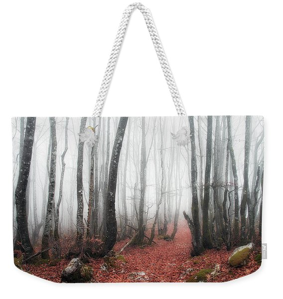 The Corridor Weekender Tote Bag