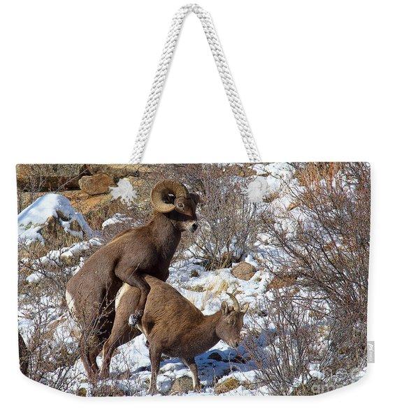 The Coupling Weekender Tote Bag