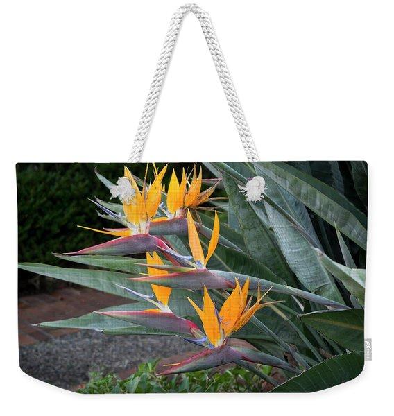 The Crane Flower - Bird Of Paradise  Weekender Tote Bag