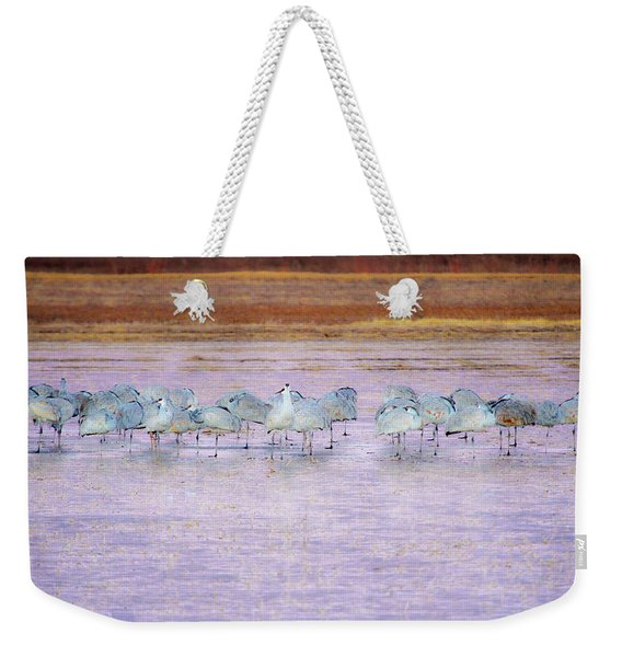 The Cranes Of Bosque Weekender Tote Bag