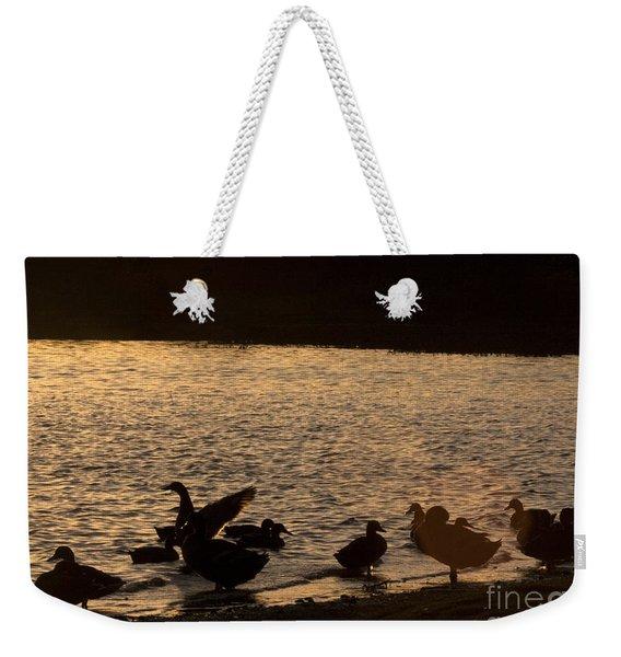The Ducks  Weekender Tote Bag
