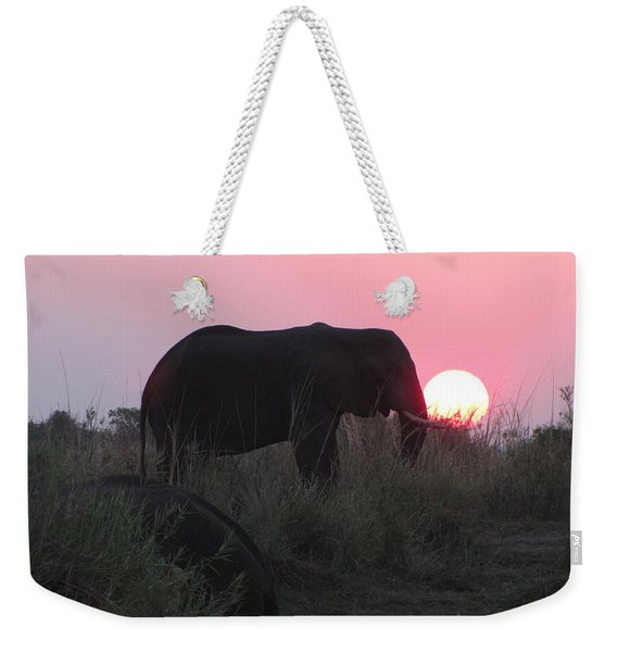 The Elephant And The Sun Weekender Tote Bag