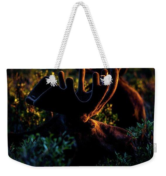 The Eye Of The Moose Weekender Tote Bag
