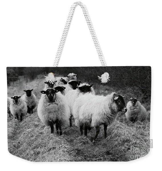 The Flock 1 Weekender Tote Bag