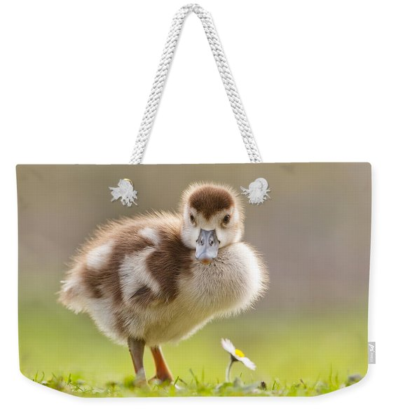 The Gosling And The Flower Weekender Tote Bag
