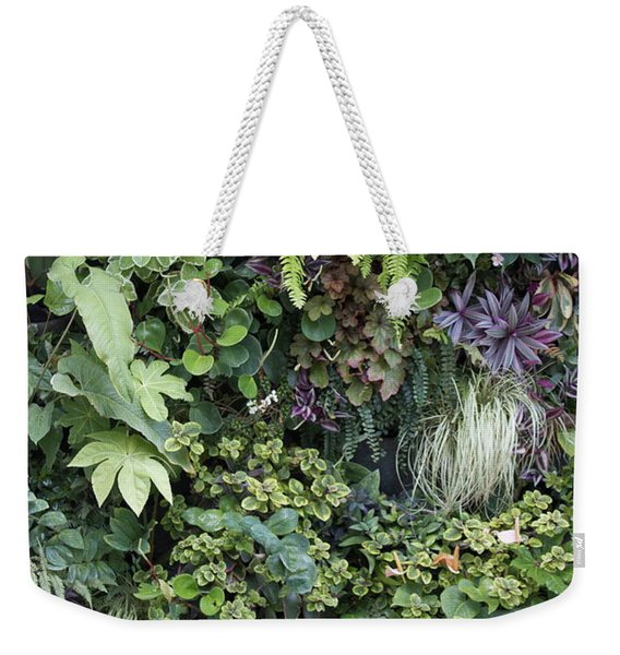 Weekender Tote Bag featuring the pyrography The Green Room by Michael Lucarelli