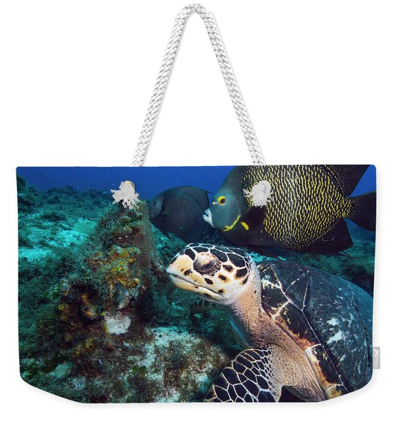 The Green Turtle And The Angelfish Weekender Tote Bag