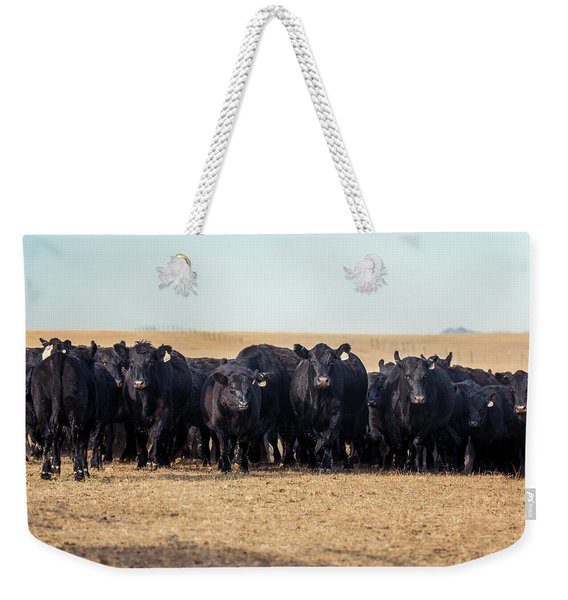 The Herd Rushes In Weekender Tote Bag