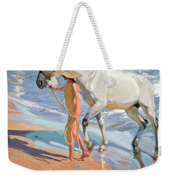 The Horse's Bath Weekender Tote Bag