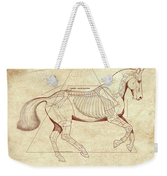 The Horse's Canter Revealed Weekender Tote Bag