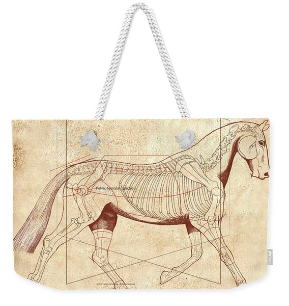 The Horse's Trot Revealed Weekender Tote Bag