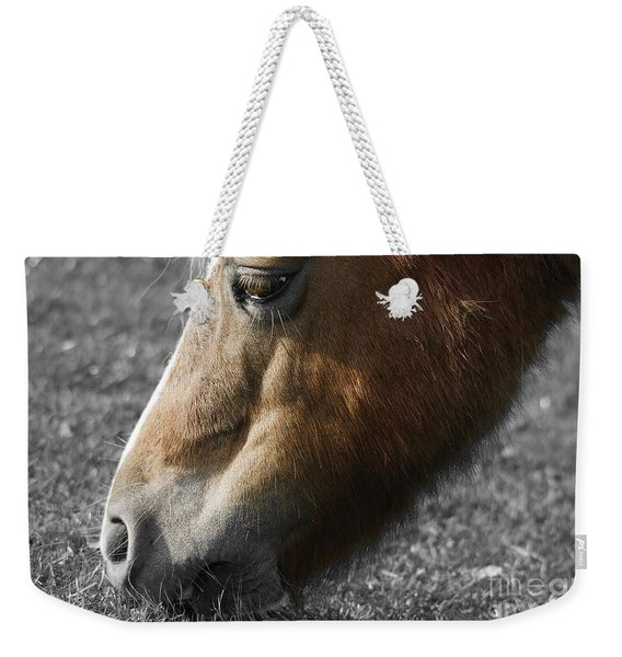 The Hungry Horse Weekender Tote Bag