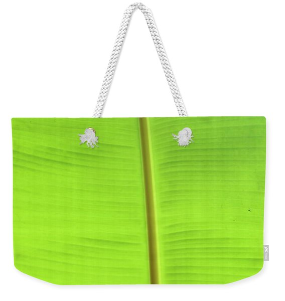 The Jungle Illuminated Weekender Tote Bag