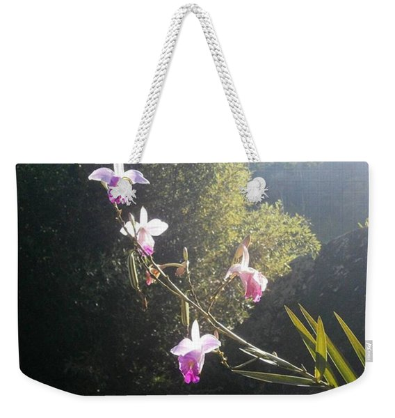 The Kiss Of The Sun Weekender Tote Bag