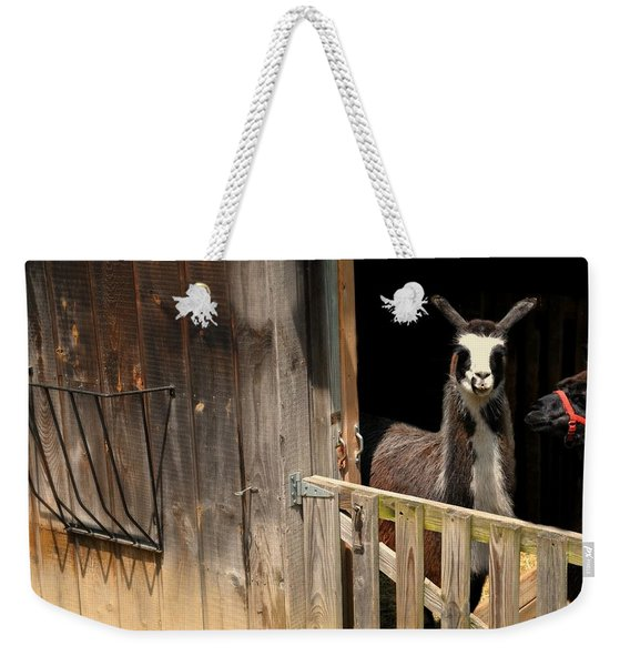 The Llama Barn Weekender Tote Bag