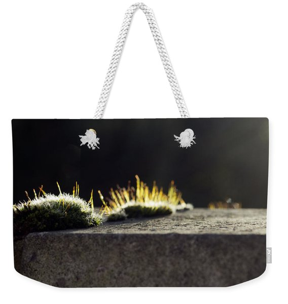 The Last Sun Of December Weekender Tote Bag