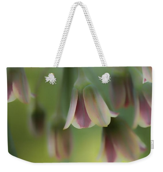 The Light Inside The Belfry  Weekender Tote Bag