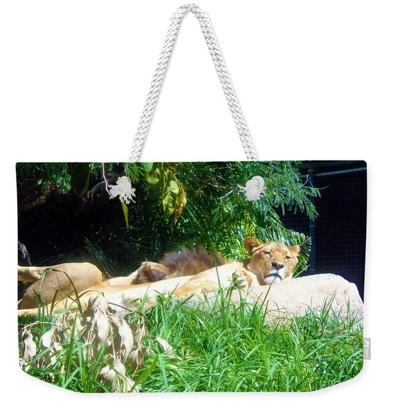 The Lion Awakes Weekender Tote Bag