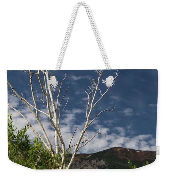 The Lonely Aspen  Weekender Tote Bag
