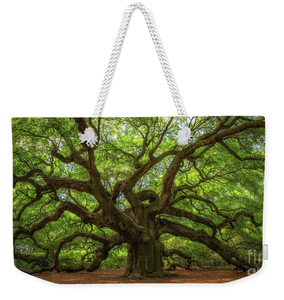 The Magical Angel Oak Tree Panorama  Weekender Tote Bag