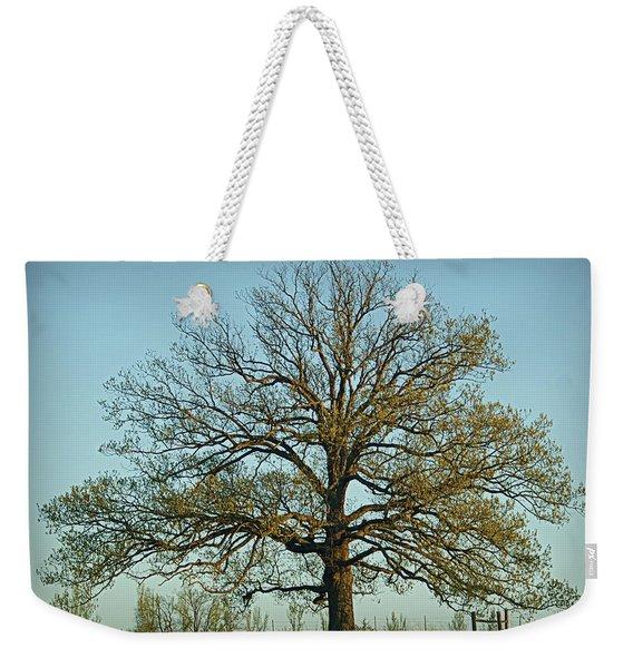 The Mighty Oak In Spring Weekender Tote Bag
