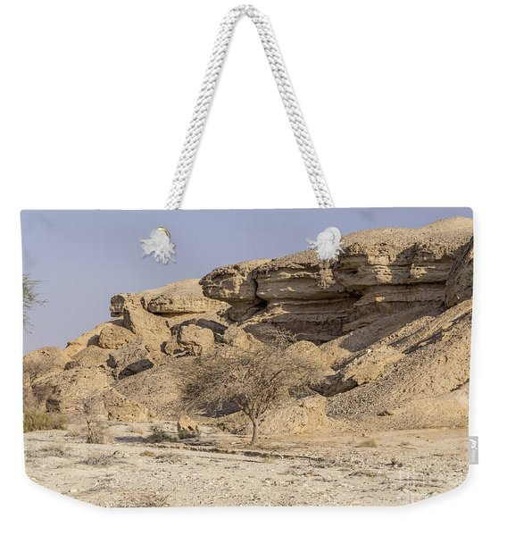Weekender Tote Bag featuring the photograph The Old Gatekeeper 03 by Arik Baltinester