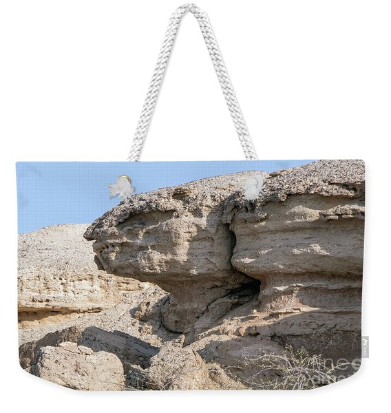 Weekender Tote Bag featuring the photograph The Old Gatekeeper by Arik Baltinester