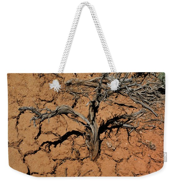 Weekender Tote Bag featuring the photograph The Parched Earth by Ron Cline