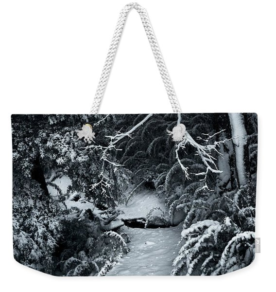 The Path To The Frozen Forest In The Argentine Patagonia Weekender Tote Bag