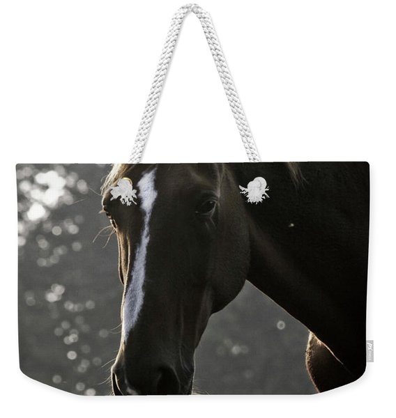 The Portrait Of The Horse Weekender Tote Bag