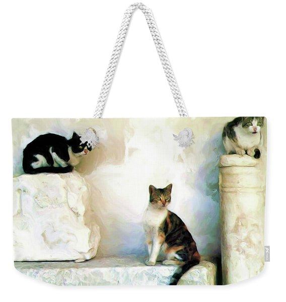 The Pose - Rdw250812 Weekender Tote Bag