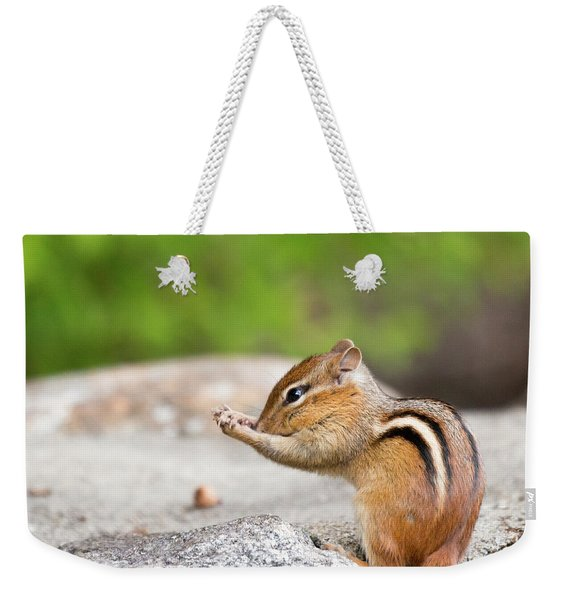The Praying Chipmunk Weekender Tote Bag