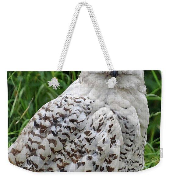 The Professor Weekender Tote Bag