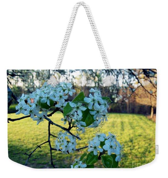 The Promise Of Spring 1c Weekender Tote Bag
