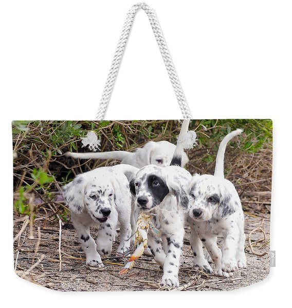 The Puppy's Prize Weekender Tote Bag