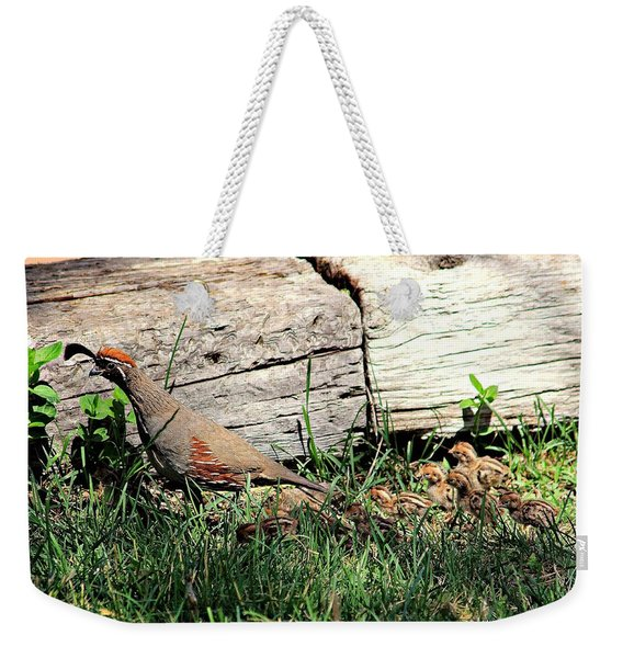 The Quail Family Weekender Tote Bag