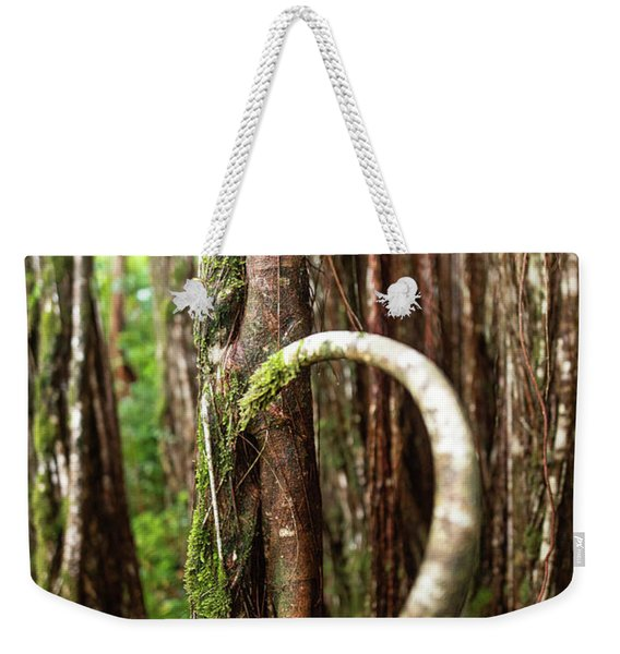 Weekender Tote Bag featuring the photograph The Rainforest by Break The Silhouette