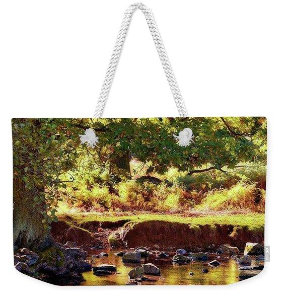 The River Lin , Bradgate Park Weekender Tote Bag