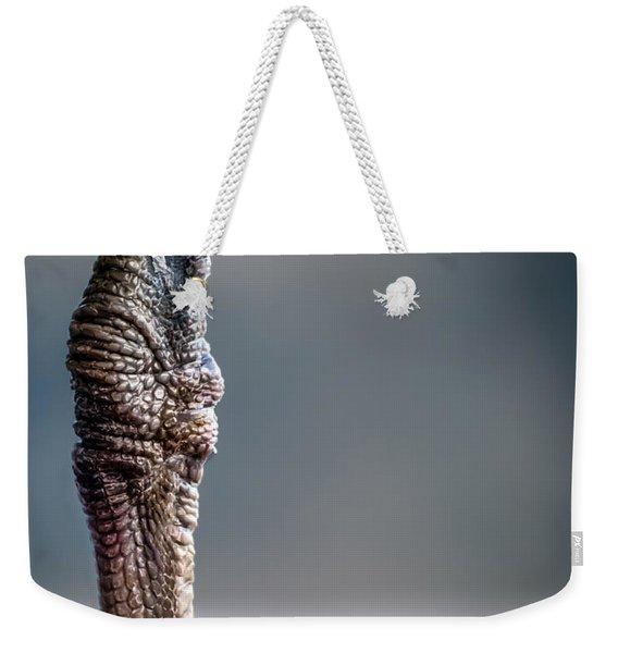The Seagulls Knee  Weekender Tote Bag