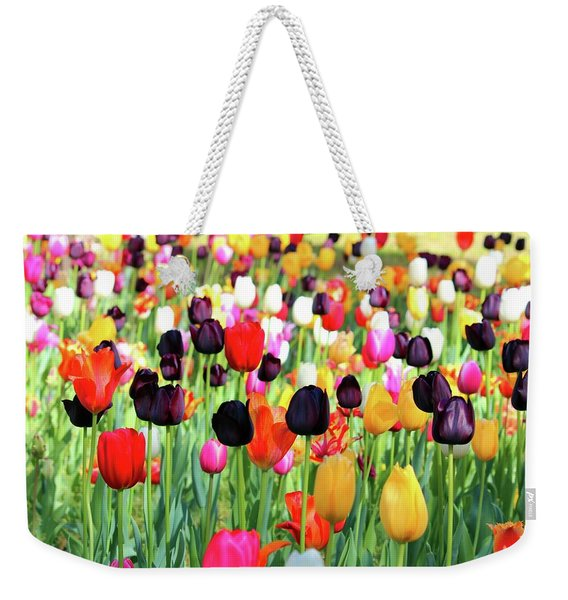 The Season Of Tulips Weekender Tote Bag